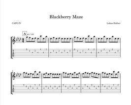 Blackberry Maze (pdf - download)