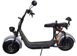 Electric Fat Scooter