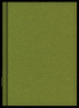 Schreibkult Lodentuch apfelgrün