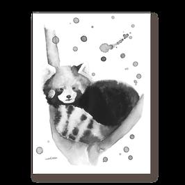 Affichette Panda roux