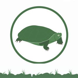 Membresía Tortuga de Poza