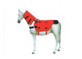 Equusir BIOS Bio Stimulation System
