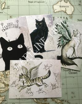 """Lot de 4 cartes postales """"chats"""""""