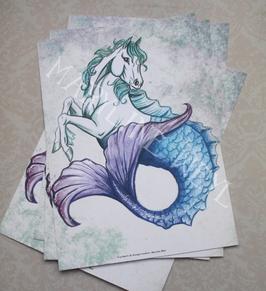 carte postale cheval marin hippocampe