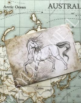 carte postale licorne blanche