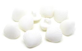 5 Boutons coquillages blancs en acrylique à coudre  - 12 mm - BT011
