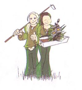 Kompakter, Busch Thymian - Thymus vulg. `Compactus´ (Pflanze)