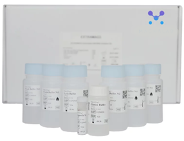 MB-Si Kit I - 100 reactions - DNA/RNA isolation with magnetic beads