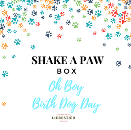 SHAKE A PAW - Oh Boy - BIRTH DOG DAY