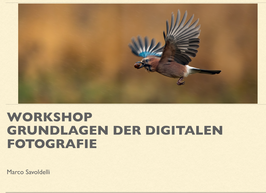 "Workshop ""Grundlagen der digitalen Fotografie"""