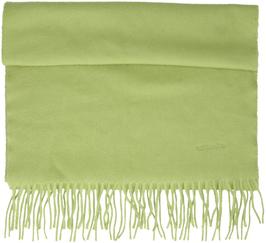 Hermès Schal aus 100% Kaschmir in Grün