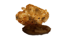 Croquants noix chocolat orange 100g