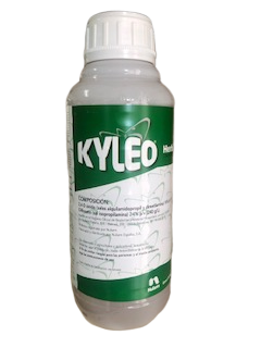 KYLEO E/1L
