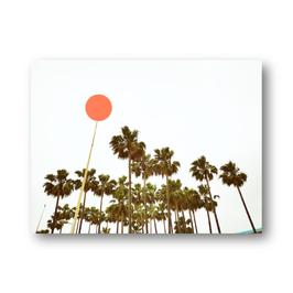 Palmen mit Punkt