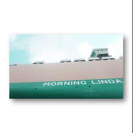 Morning Linda