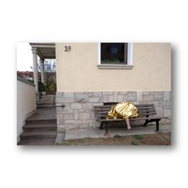 GOLDEN / safe VII