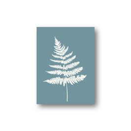 Farn graublau, gezeichnet, zwei Varianten