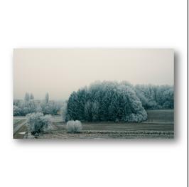 Schneelandschaft_I