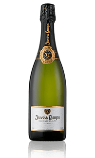 Juvé y Camps Nectar Blanc (Dessert Cava)