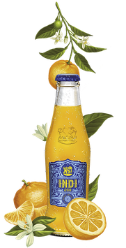 Indi Orange Premium Tonic