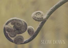 Naturkarte - SLOW DOWN