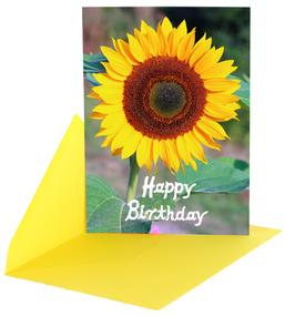 Postkarte Sonnenblume mit Kuvert Ap0010