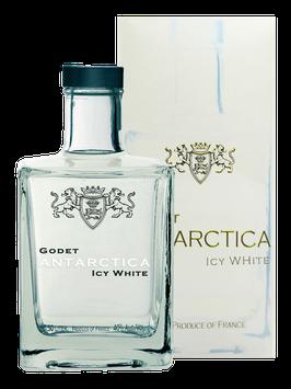 Godet Icy Antartica Cognac 0,5 Liter