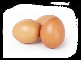 Eier verschiedener Gewichtsklassen XL ; L ; M ; S