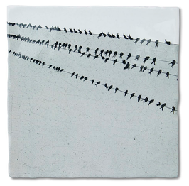 Kachel Birds