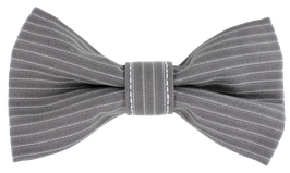Fliege, grau gestreift