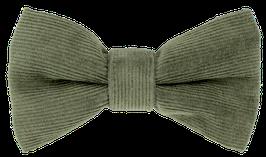 Schmale Fliege, grün