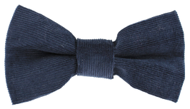Fliege, blau
