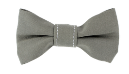 Schmale Fliege, grau