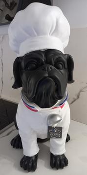 Bouledogue chef de cuisine géant