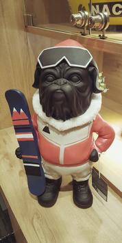 Bouledogue skieur