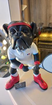Bouledogue Tennisman