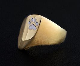 Asymmetrischer mattierter Ring Modell: GMH-302gp