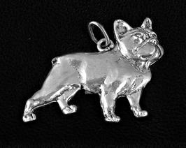 Französische Bulldogge Teilplastik (TP)