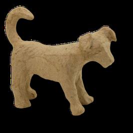Kleiner Hund Jack Russel
