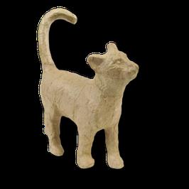 Kleine Katze laufend