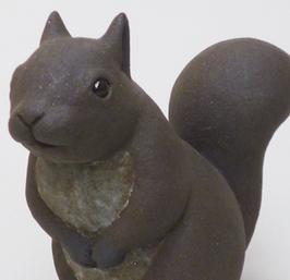 Squirrel by Kai Tsuruta