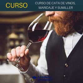 OFERTA! Curso de Cata de Vinos, Maridaje y Sumiller + Titulación Certificada