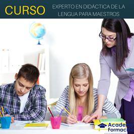 Curso Experto en Didáctica de la Lengua Para Maestros + Titulación Certificada