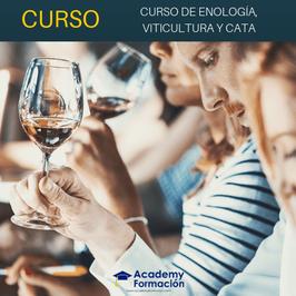 Curso Online de Enología, Viticultura y Cata + Titulación Certificada