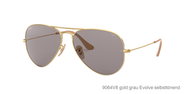 Ray-Ban 3025 Aviator Evolve