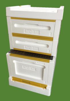 BeeBox Dadand US  / Modifiziert 10er Set 3