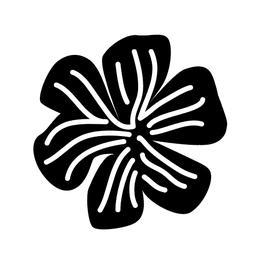 STEMPEL MIDI – Blume Streifen