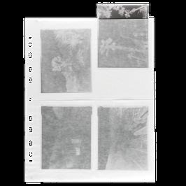 Pergamin Negativhüllen 4x5 inch bis 10x15cm / zum Abheften