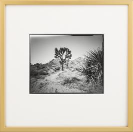 Marc Stache - Westcoast Pinholes 01