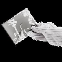 Antistatik Handschuhe (Einheitsgröße)